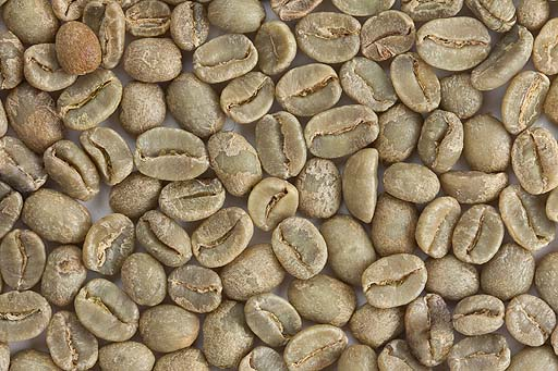 A lot of green unroasted coffee beans